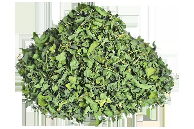 indigo-leaf-dry
